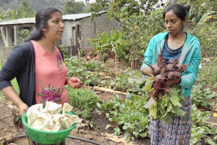 Zwei Frauen in Guatemala mit Ernteerträgen