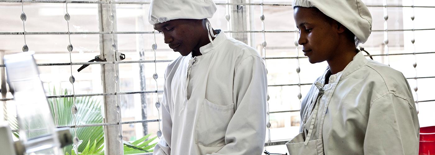 Deux pharmaciens dans un laboratoire en Tanzanie.